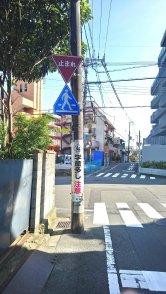 wp-image-2011177466